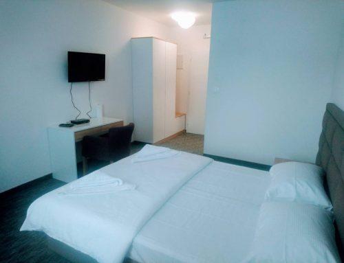 Standard soba 1